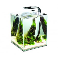 Aквариум Aquael Shrimp Set Smart LED Plant ll 20л черный